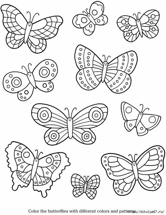 Бабочки маленькие раскраски