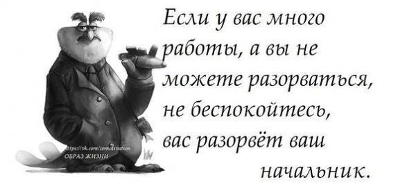 smeshnie_kartinki_139229364851 (600x276, 61Kb)