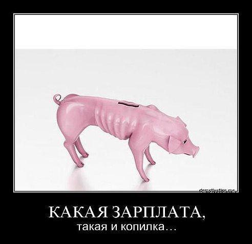 smeshnie_kartinki_139213714143 (492x476, 52Kb)