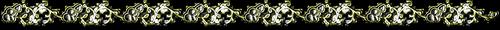 0_81d03_a601d83e_L (500x30, 39Kb)