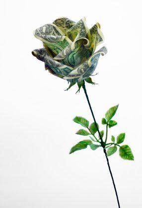 138602-286x420-origami-money-rose (286x420, 13Kb)