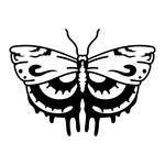 ������ butterfly stencil (14) (700x700, 106Kb)