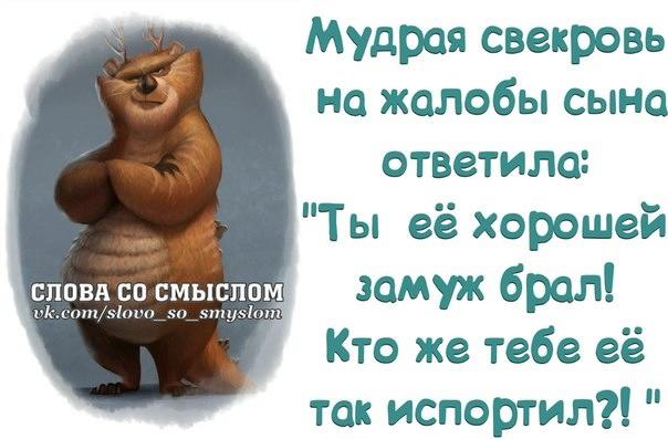 1392580594_frazochki-3 (604x397, 111Kb)