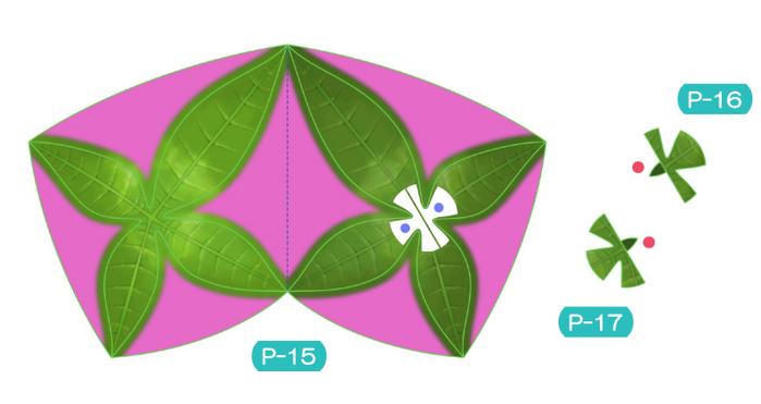 Пахира (Pachira) из бумаги. Цветные шаблоны для распечатки (3) (700x371, 162Kb)