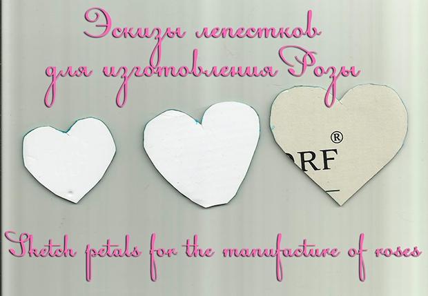 eskiz_lepestkov_rozi_s (620x429, 156Kb)