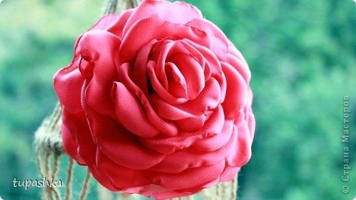 роза из шифона (520x293, 84Kb)
