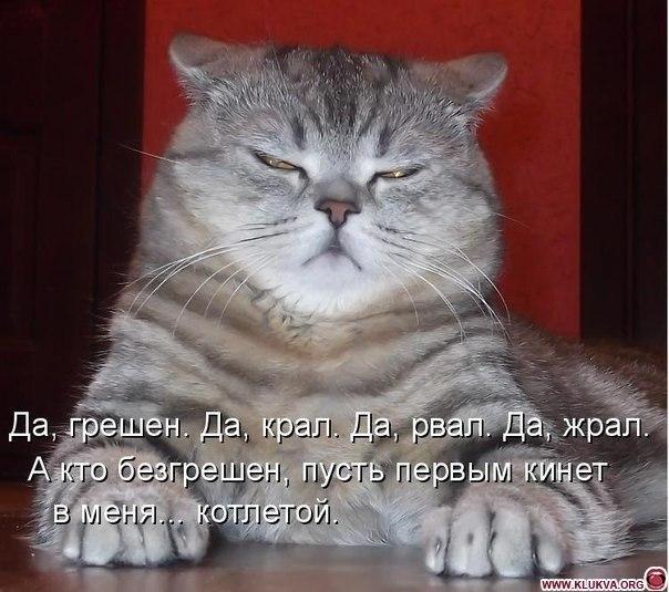 http://img1.liveinternet.ru/images/attach/c/10/110/393/110393275_3180456_x_23ee7b6b.jpg