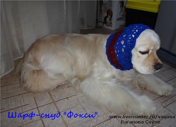 шарф для собаки кокер-спаниель
