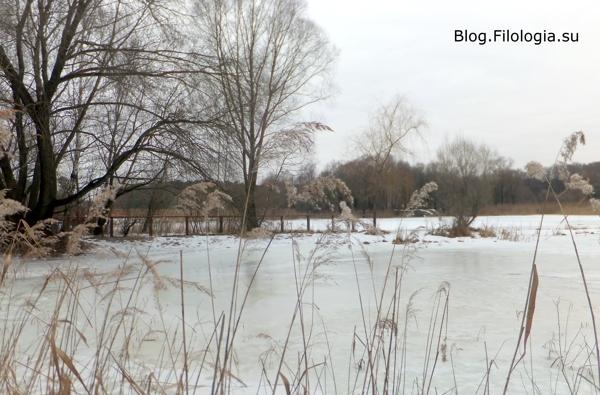Зимний лес в преддверии весны/3241858_bor12 (600x395, 150Kb)