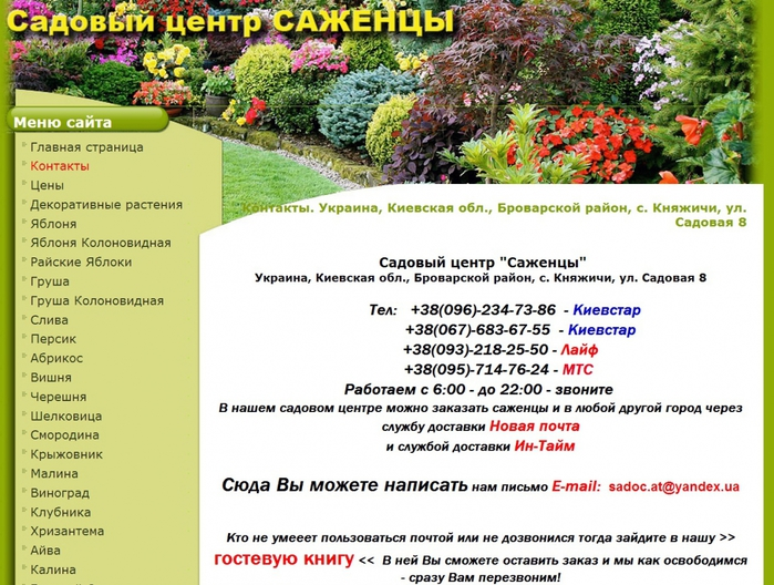 купить хорошие саженцы плодовых деревьев в украине недорого саженцы из питомников,/4682845_ (700x528, 303Kb)