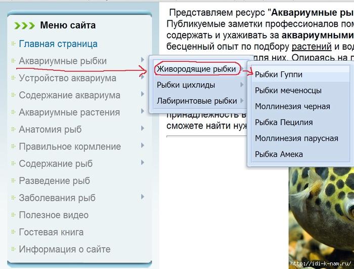 как ухаживать за аквариумными живородящими рыбками, какие бывают живородящие аквариумные рыбки,/1393296756_Bezuymyannuyy_1 (700x531, 246Kb)