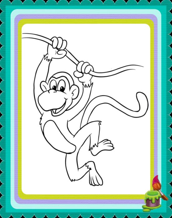 Раскраски обезьян для детей