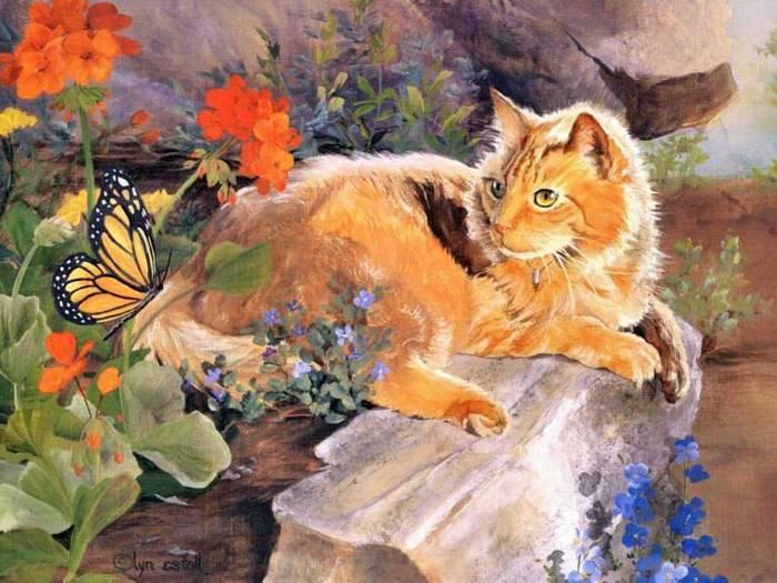 кошка красивая (700x525, 67Kb)