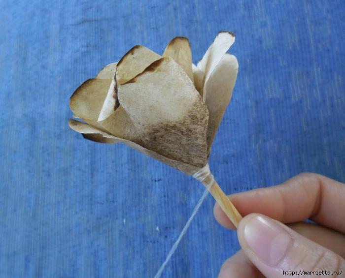 Розы из кофейных фильтров. Мастер-класс (15) (700x565, 244Kb)
