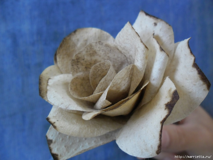 Розы из кофейных фильтров. Мастер-класс (16) (700x525, 199Kb)