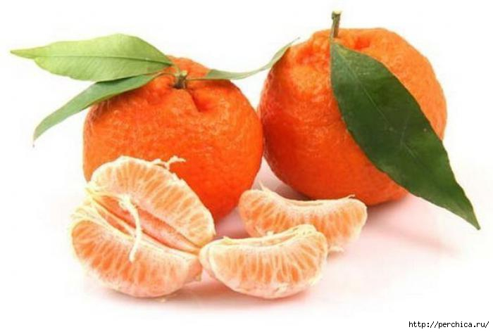4979645_110406334_large_mandarin_1 (700x472, 95Kb)
