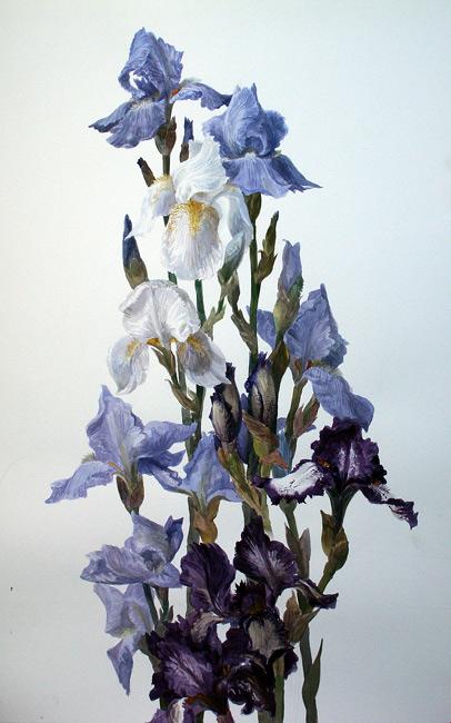 110493772_flowers8 (406x650, 241Kb)