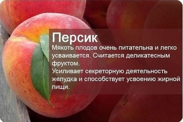 Познавательные факты о фруктах и ягодах (600x401, 92Kb)