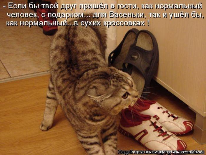 1298591561_kotomatritsa-9 (700x525, 197Kb)