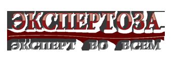 expertoza.com_logo (360x130, 41Kb)