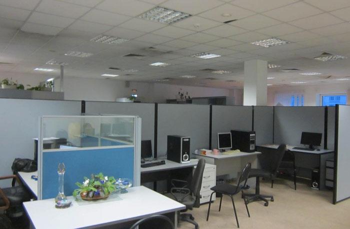 04 Офисные одуванчики (700x457, 151Kb)