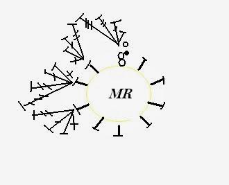 Цветы крючком. НАРЦИСС (9) (330x267, 27Kb)