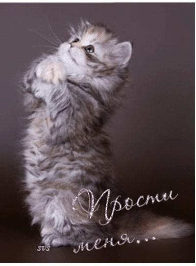 http://img1.liveinternet.ru/images/attach/c/10/110/650/110650529_X_BLnsaFL0U.jpg