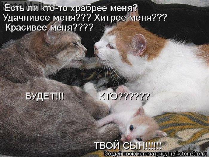 image_99 (700x525, 283Kb)