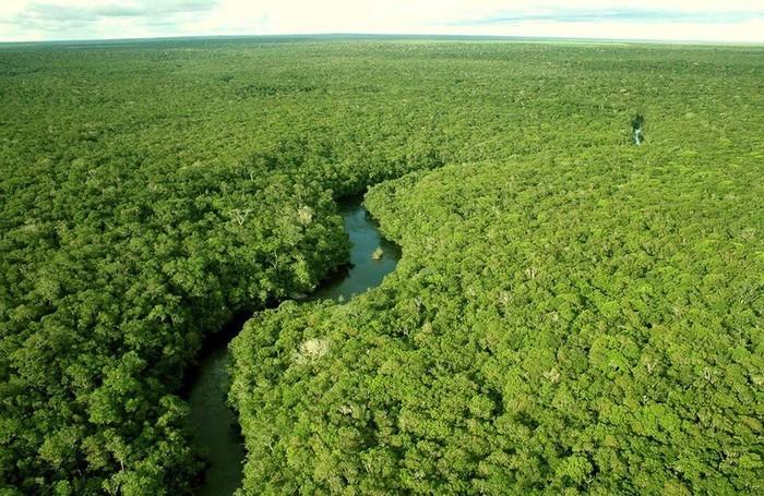 Amazonas01 (700x455, 153Kb)