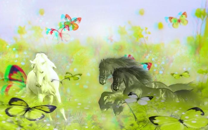 белая лошадь (700x437, 201Kb)