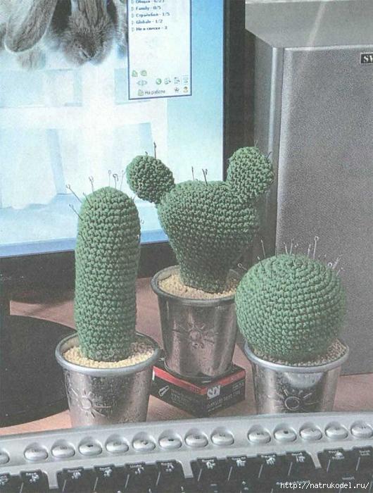 Kaktusy-igolnitcy (530x700, 291Kb)