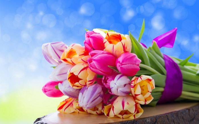 Цветы тюльпаны фото букеты 1