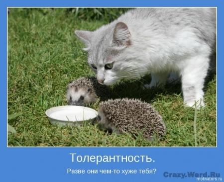 1368686137_www.radionetplus.ru-4 (450x366, 124Kb)