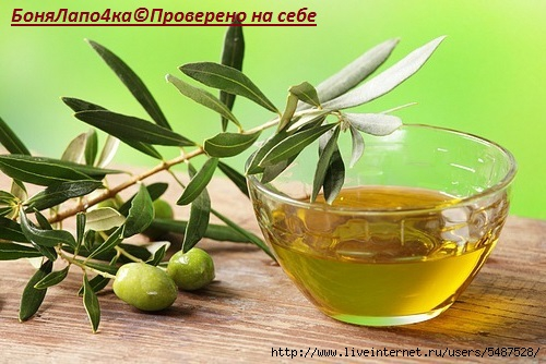 olivki_maslo (500x334, 135Kb)