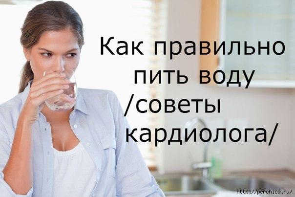 4979645_pbOxT8ZLC5U (604x403, 101Kb)
