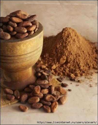 какао (404x517, 116Kb)