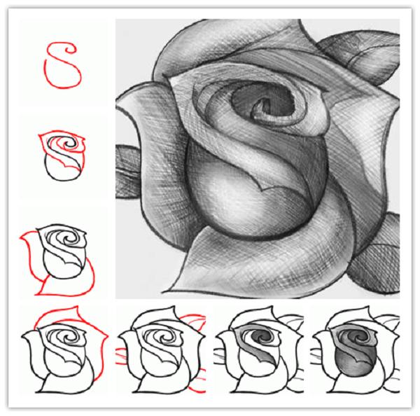 ROSE (600x594, 279Kb)