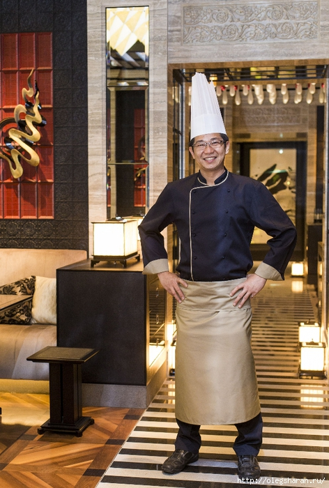 SINTOHO Chef _ IMG_0464b (472x700, 300Kb)