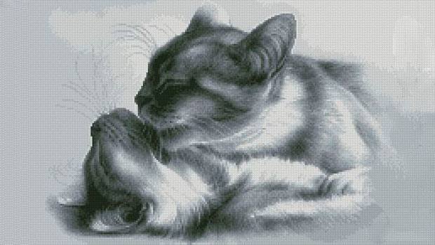 Вышивка крестом двух кошек