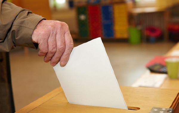 vybory_vote_b04__t4gpmtm (600x380, 68Kb)