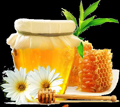 - лечение медовой лепешкой (402x358, 218Kb)