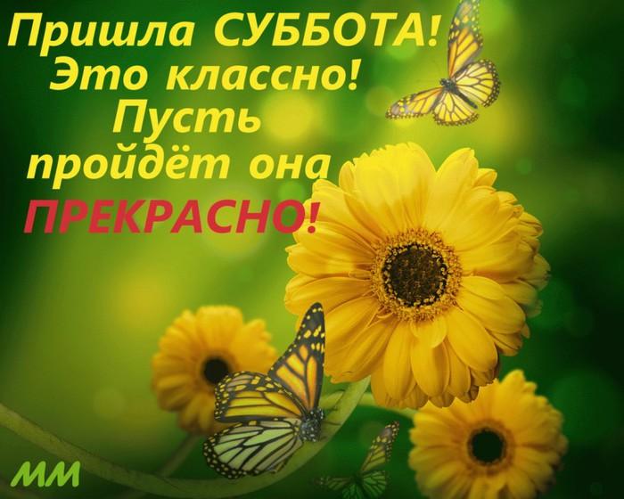 http://img1.liveinternet.ru/images/attach/c/10/111/122/111122931_3768849_.jpg