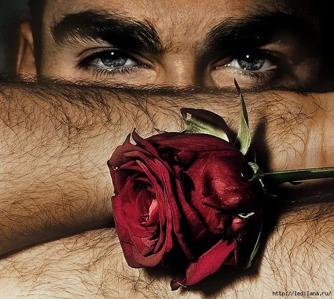 """""""Волосатые"""" чувства. Мужчина тоже хочет любви! / Фото"""