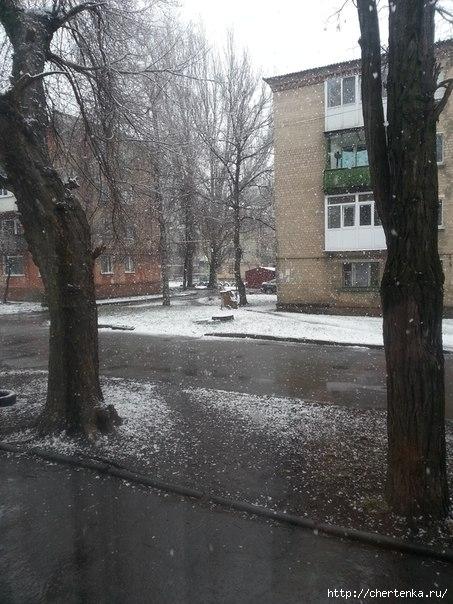 снег (453x604, 193Kb)
