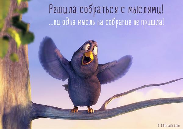 4278666_101147827_4621511_bird2 (600x422, 308Kb)