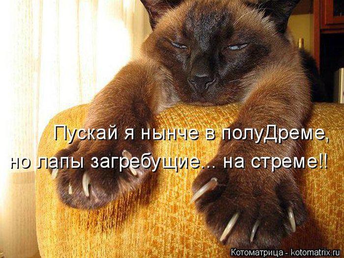 1394982024_cm_20140314_03734_003 (700x525, 381Kb)