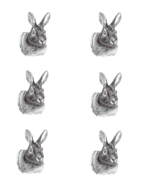 6-bunnies (506x633, 207Kb)