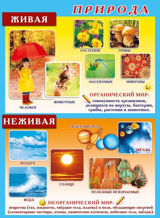 Картины раскраски по номерам в челябинске