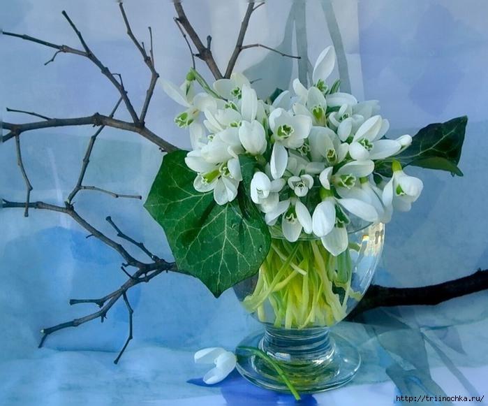 Сквозь весенний воздух улыбаясь… Оживает веточка любая. Весенний натюрморт!