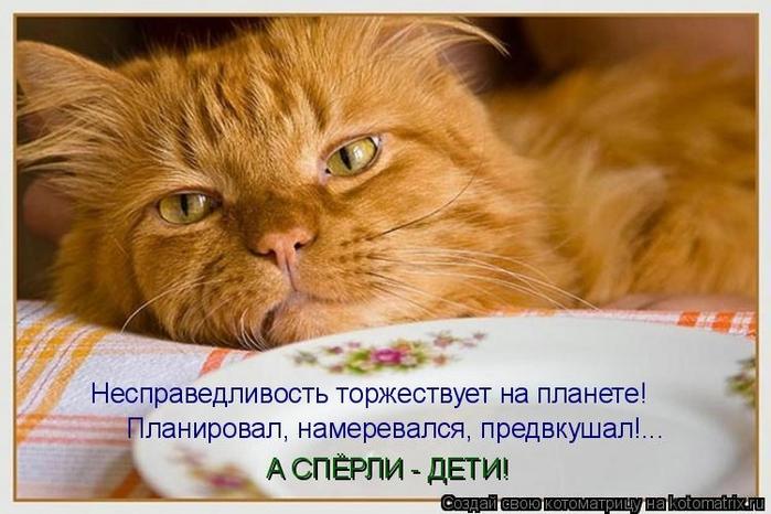 kotomatritsa_hE (700x466, 226Kb)